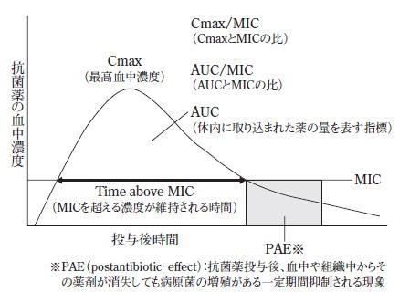 分かりやすい抗菌薬のPK/PD理論