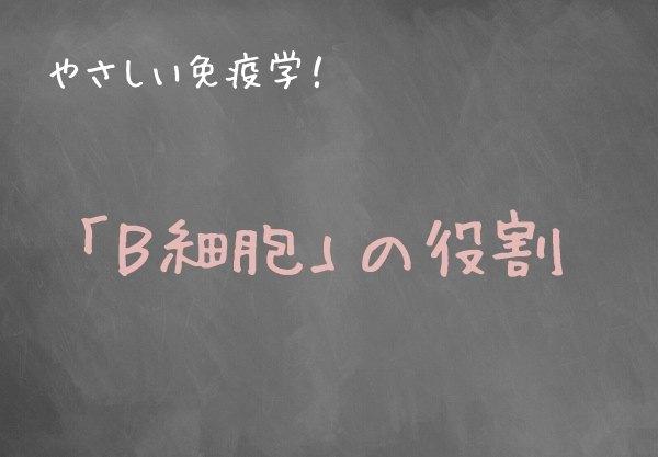 s-bsai