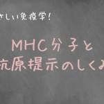 MHC分子による抗原提示とは?
